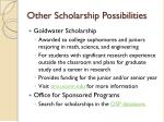 other scholarship possibilities