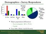 demographics survey respondents