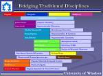 bridging traditional disciplines