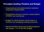 principles guiding timeline and budget