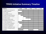 trwg initiative summary timeline