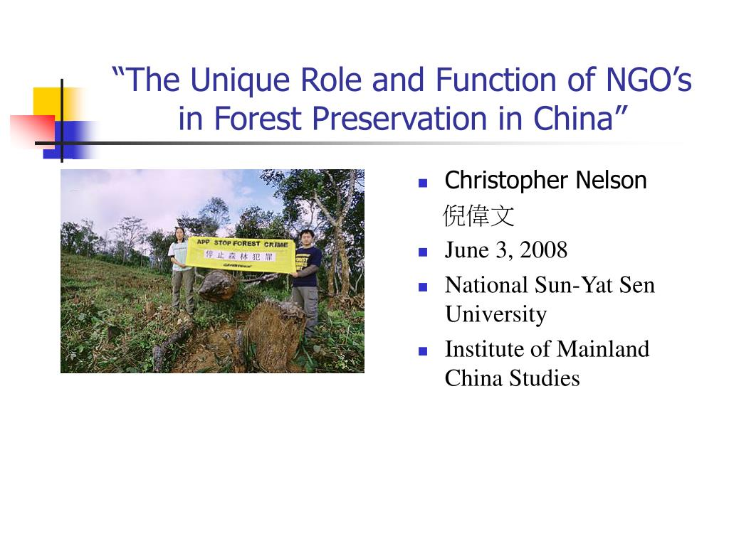role and functions of ngos pdf