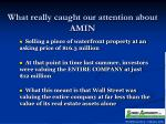 what really caught our attention about amin
