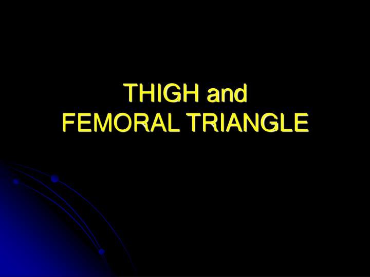 thigh and femoral triangle n.
