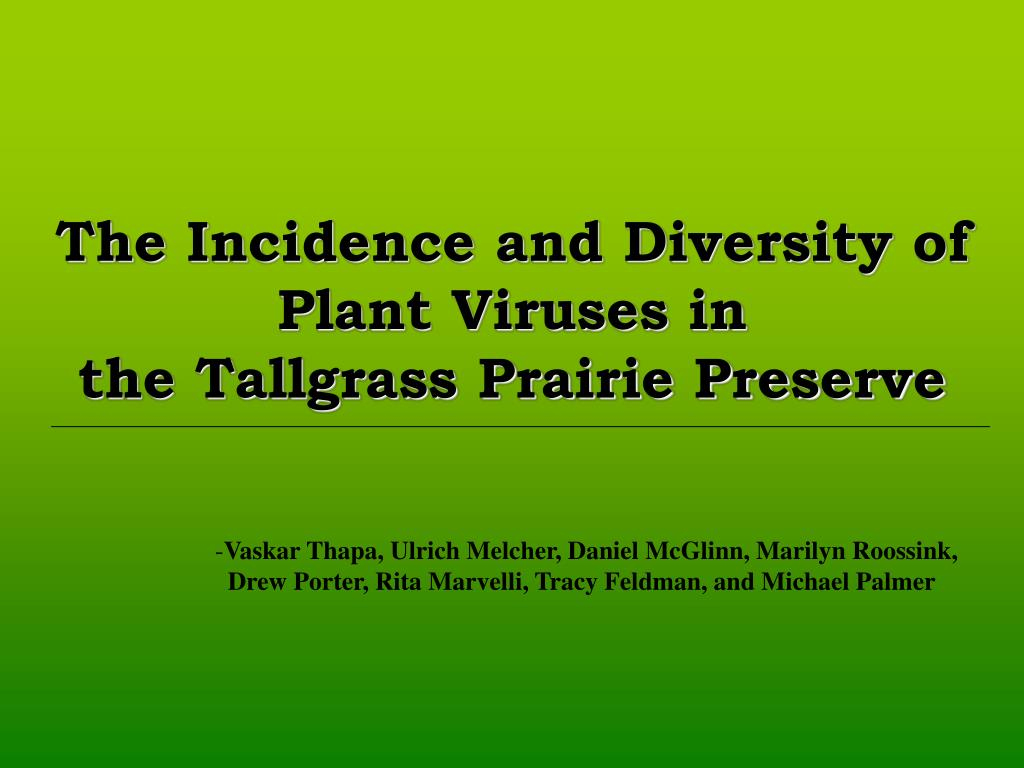 the incidence and diversity of plant viruses in the tallgrass prairie preserve l.