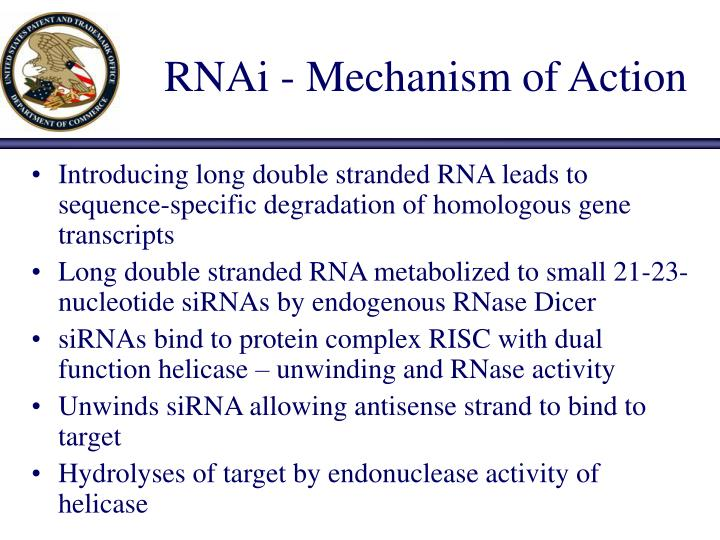 Rnai mechanism of action