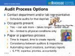 audit process options