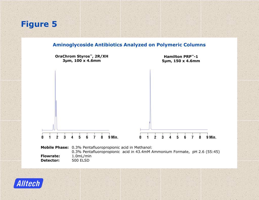 Aminoglycoside Antibiotics Analyzed on Polymeric Columns