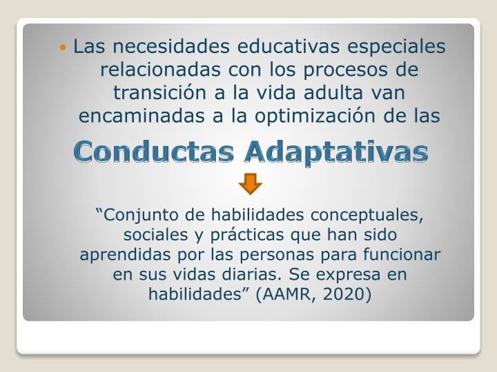 Las necesidades educativas especiales relacionadas con los procesos de transición a la vida adulta ...