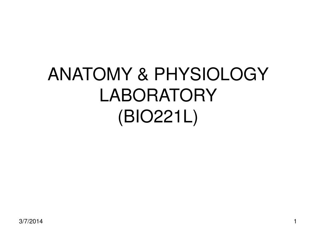 anatomy physiology laboratory bio221l l.
