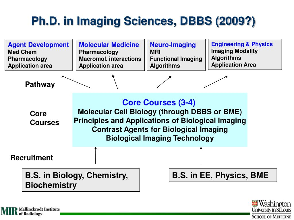 Ph.D. in Imaging Sciences, DBBS (