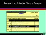 personal lab schedule sheets group a