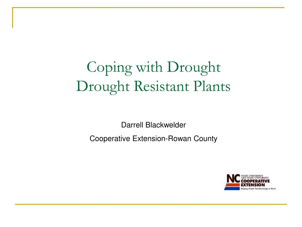 coping with drought drought resistant plants l.