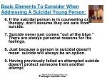 basic elements to consider when addressing a suicidal young person26