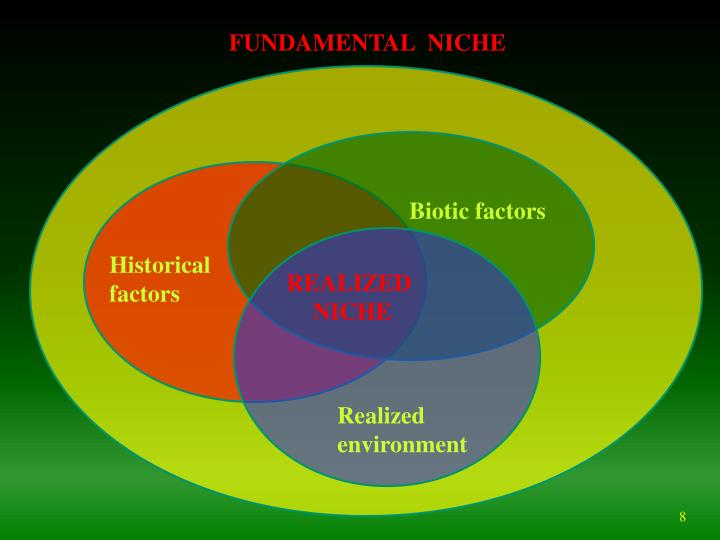 ecological niche of slater s