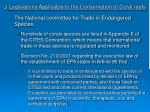legislations applicable to the conservation of coral reefs19