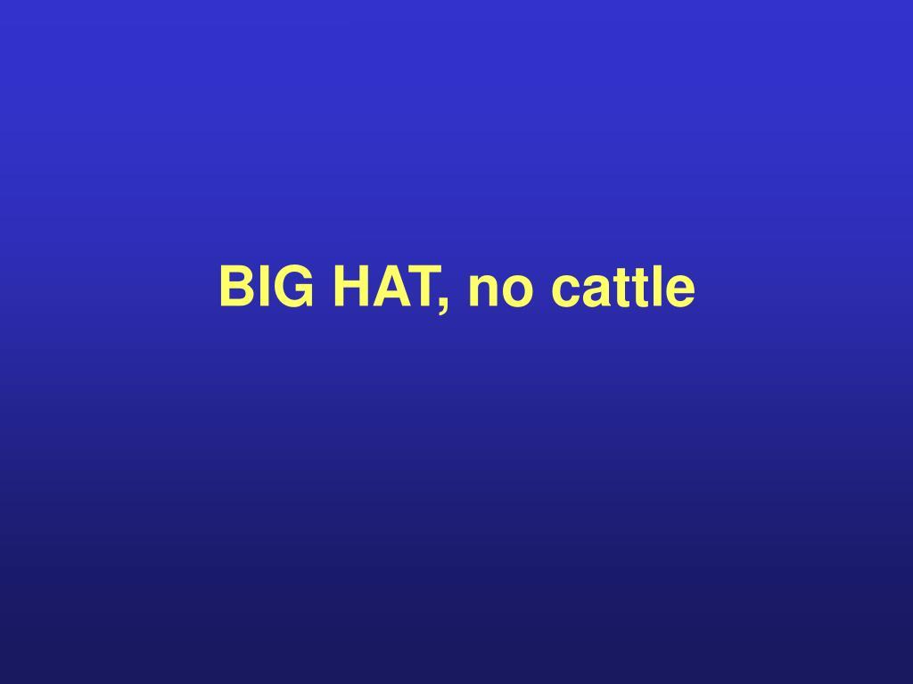 BIG HAT, no cattle