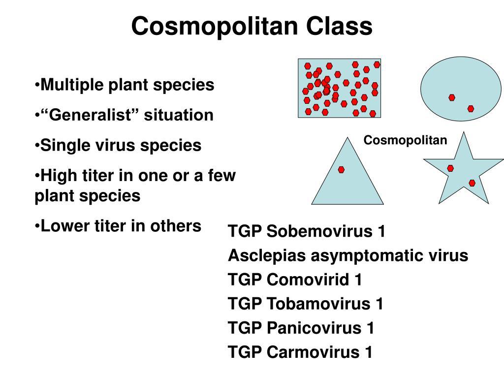 Cosmopolitan Class