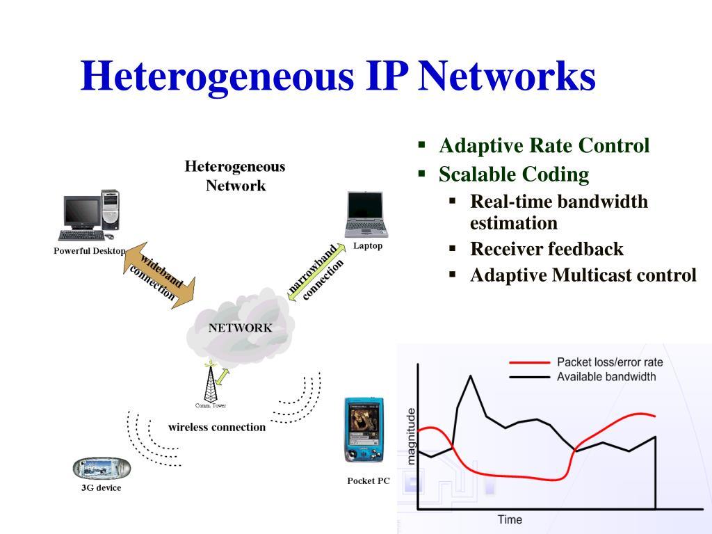 Heterogeneous IP Networks