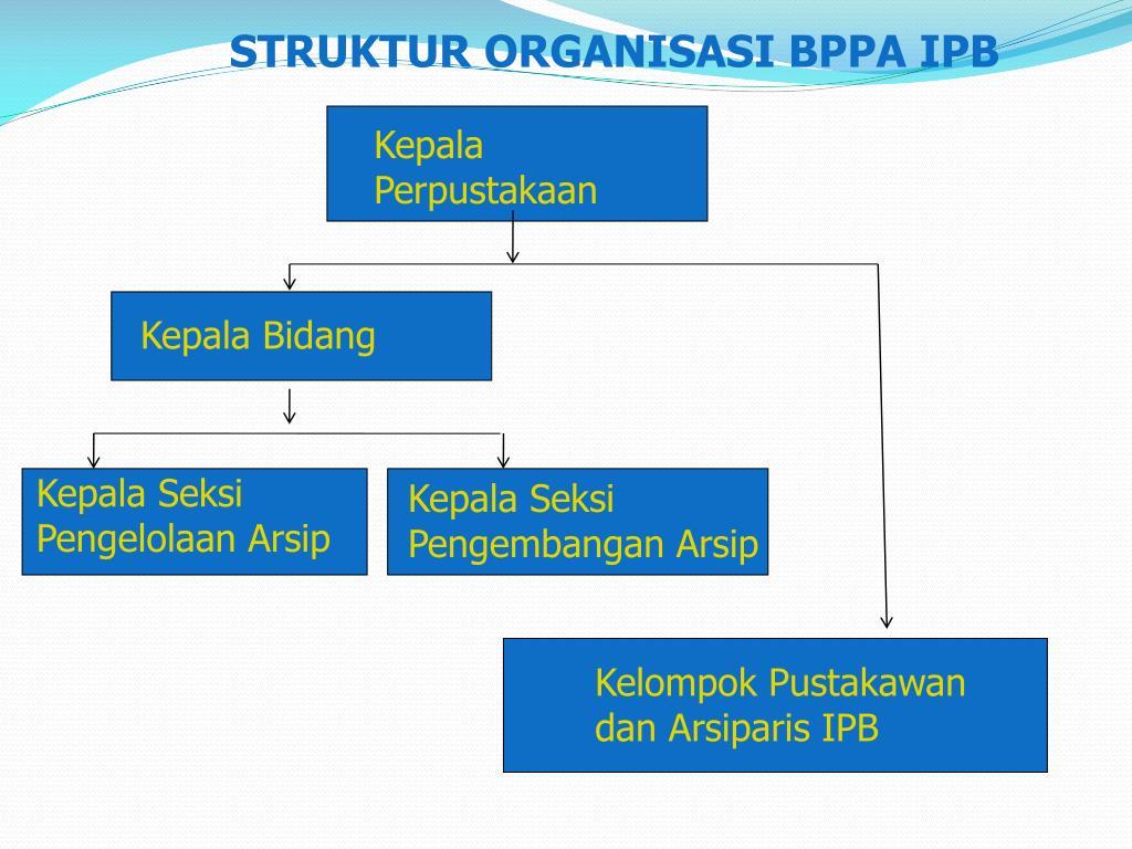 STRUKTUR ORGANISASI BPPA IPB