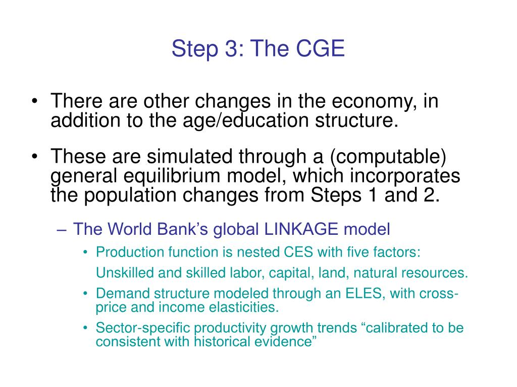 Step 3: The CGE