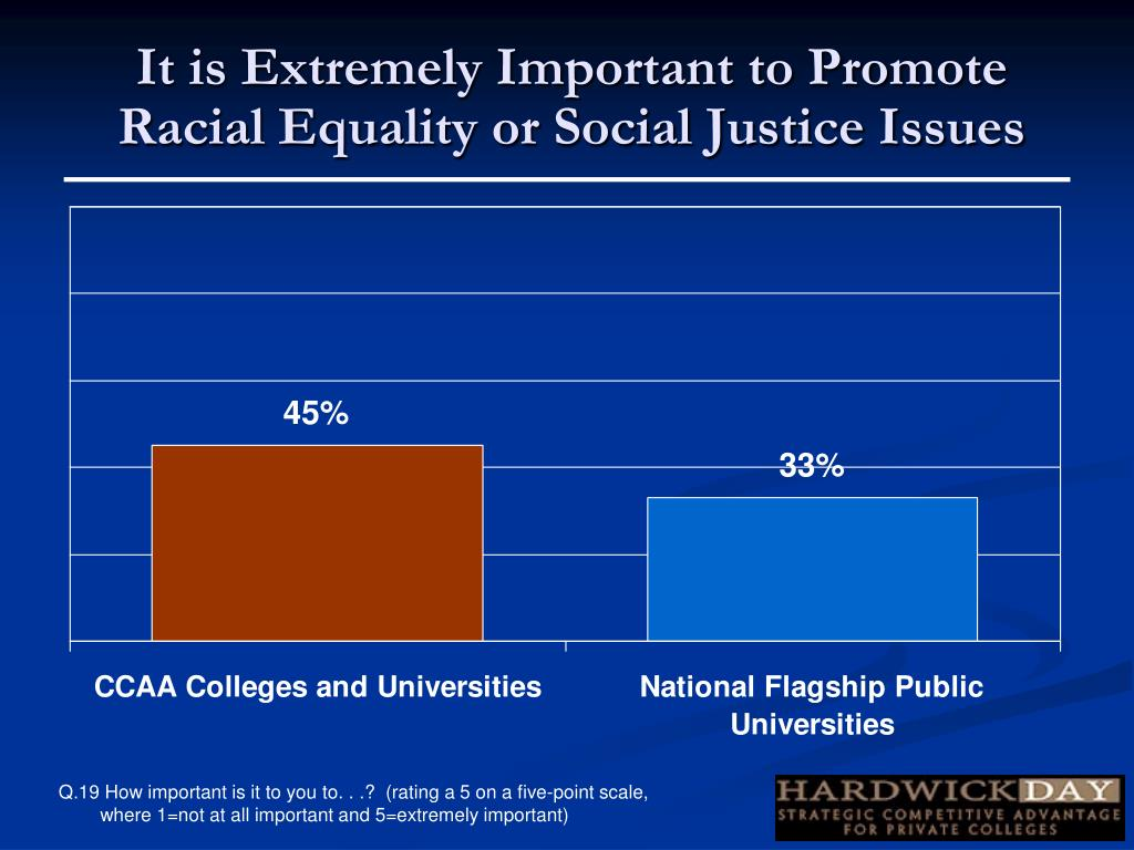 It is Extremely Important to Promote Racial Equality or Social Justice Issues