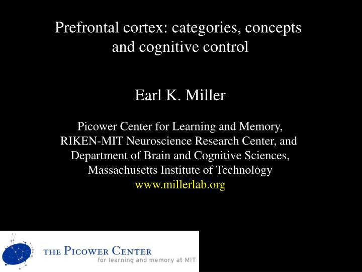 Prefrontal cortex: categories, concepts