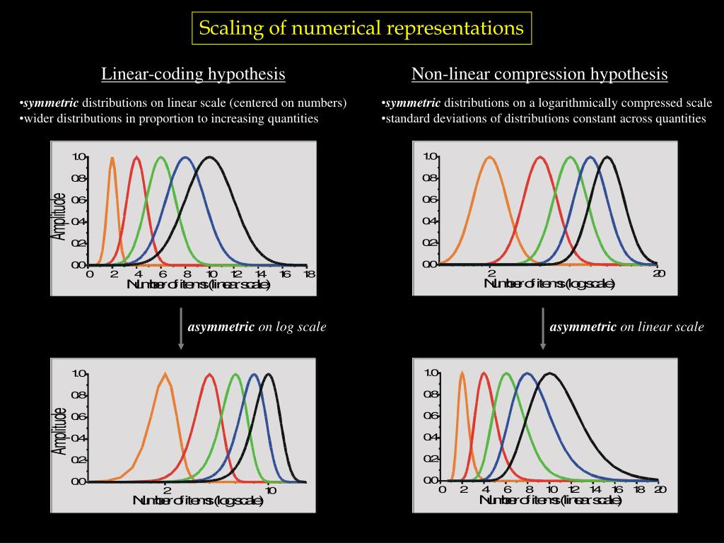 Scaling of numerical representations
