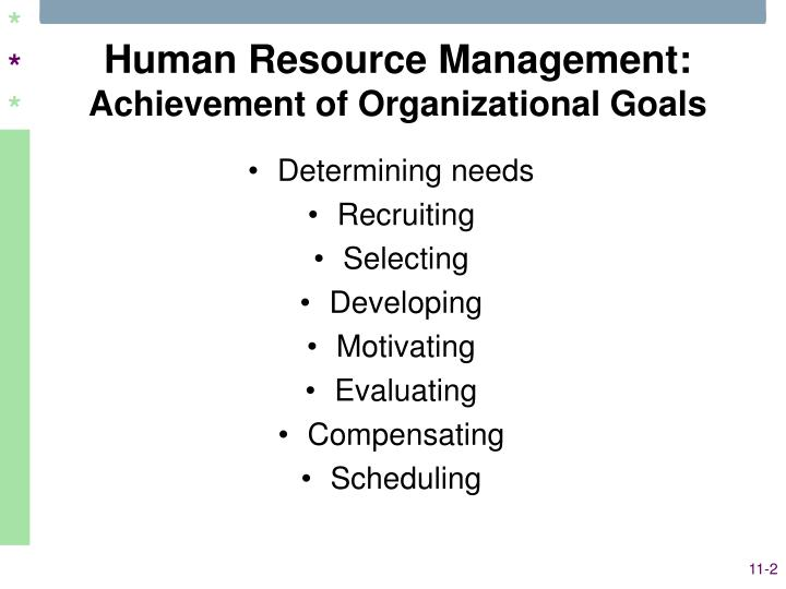 developing and leading teams to achieve organisational goals The team coach's job is to support the team to reach goals in a timely fashion while leaders on the team are developing their skills the learnings are taken and applied back on the job to achieve team objectives and meet organizational goals.