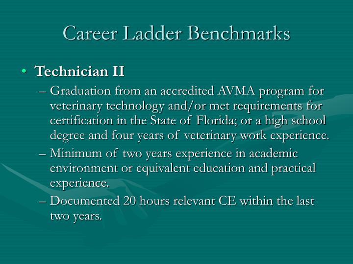 Career ladder benchmarks