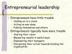 entrepreneurial leadership15