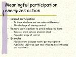 meaningful participation energizes action