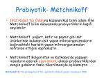 probiyotik metchnikoff