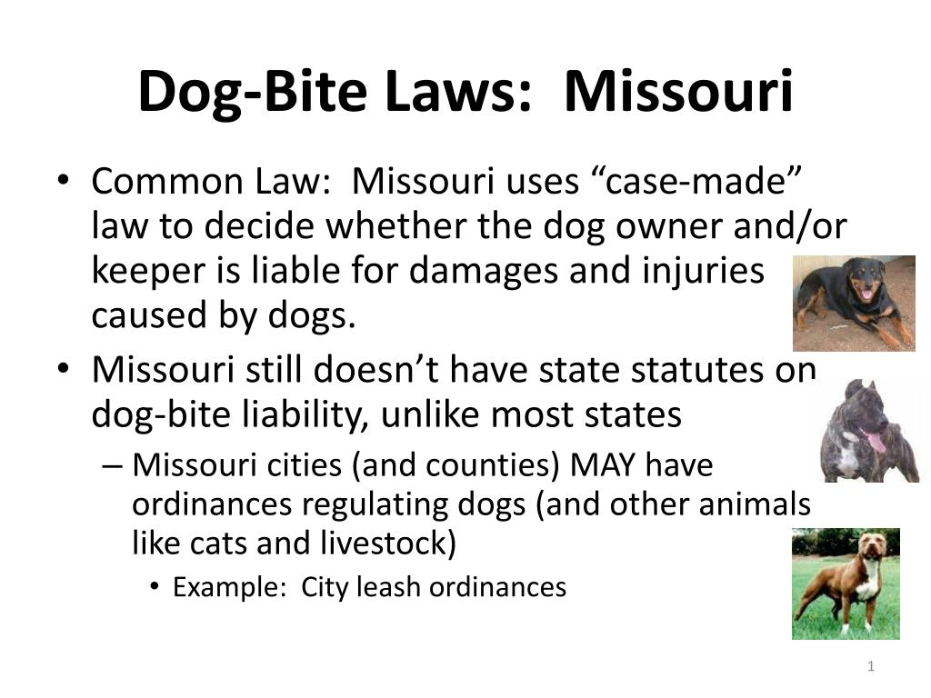 dog bite laws missouri l.