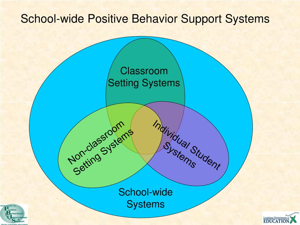 School-wide Positive Behavior Support Systems