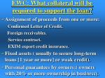 ewc what collateral will be required to support the loan