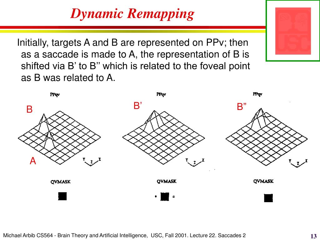 Dynamic Remapping