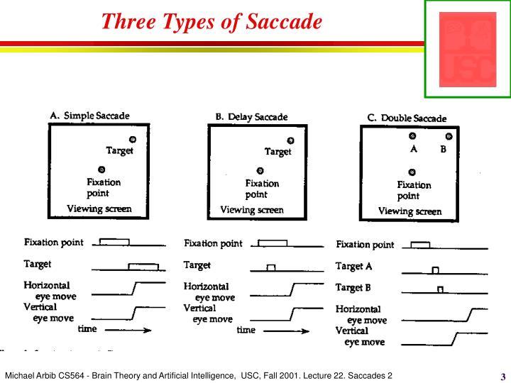 Three types of saccade