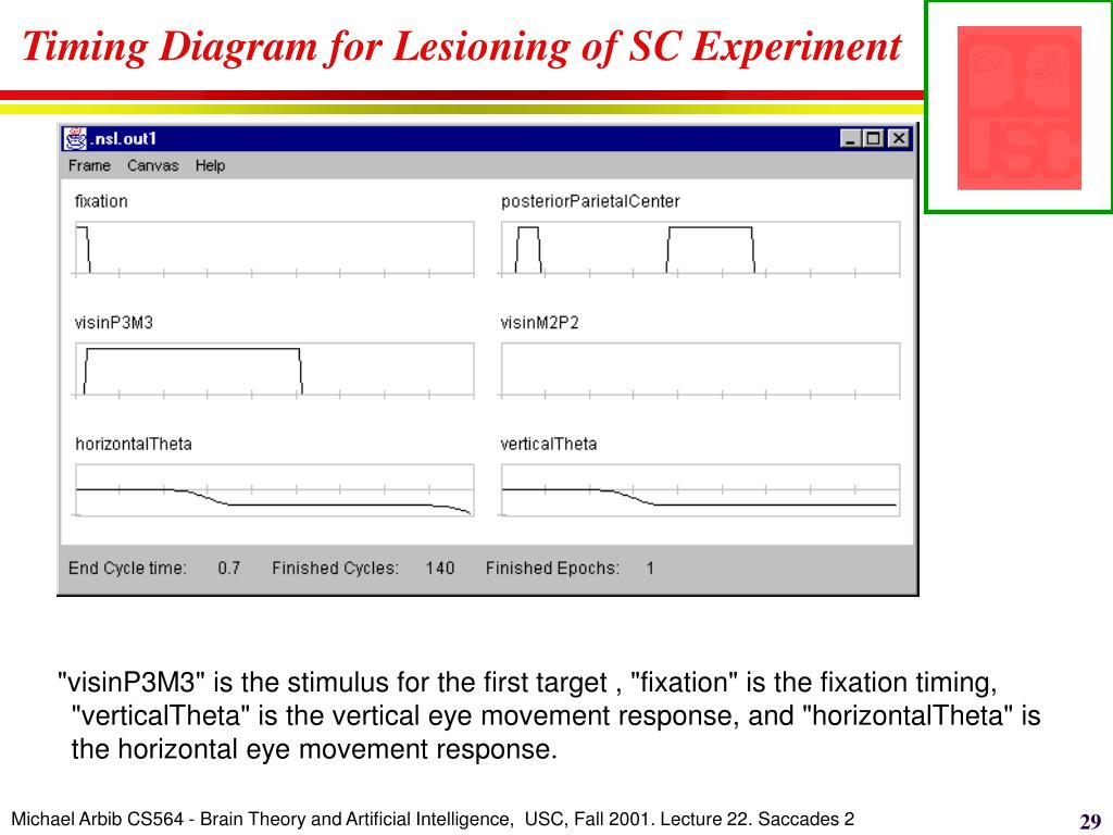 Timing Diagram for Lesioning of SC Experiment