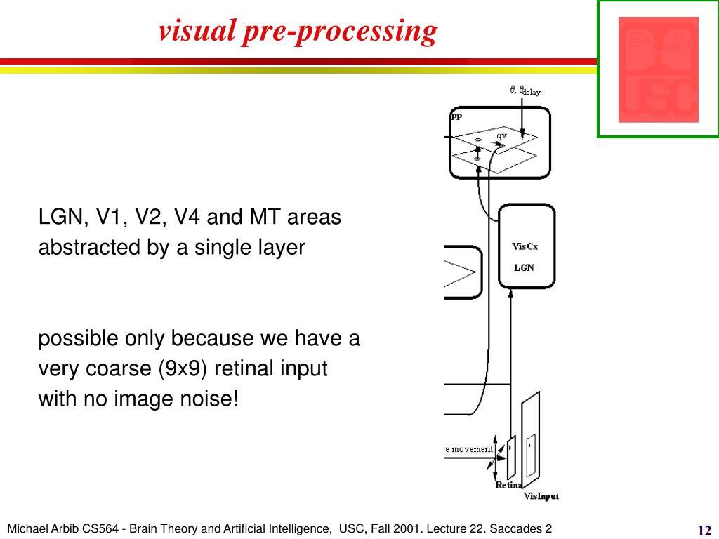 visual pre-processing