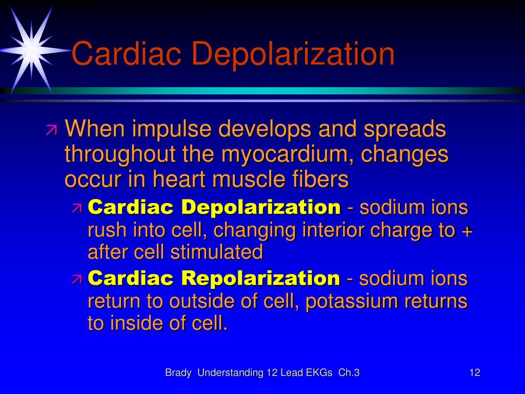 Cardiac Depolarization