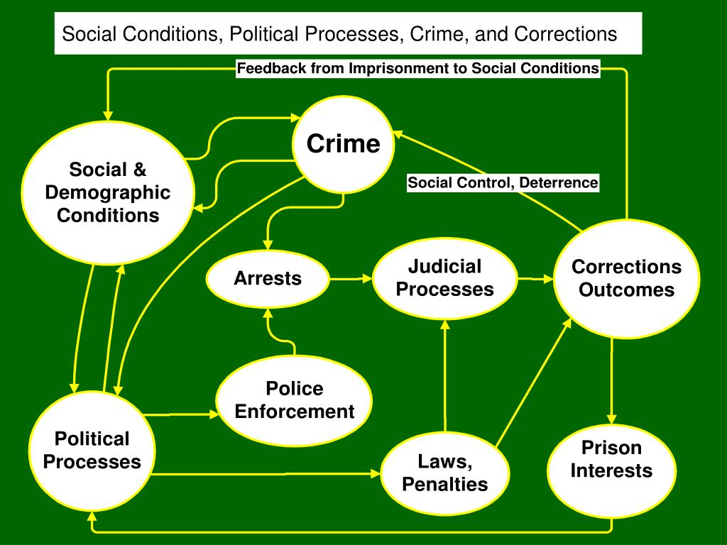 Social Conditions, Political Processes, Crime, and Corrections