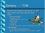 epilepsy tcm