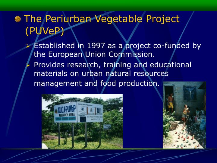 The Periurban Vegetable Project