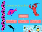 animals in food web