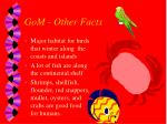 gom other facts