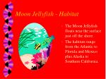moon jellyfish habitat