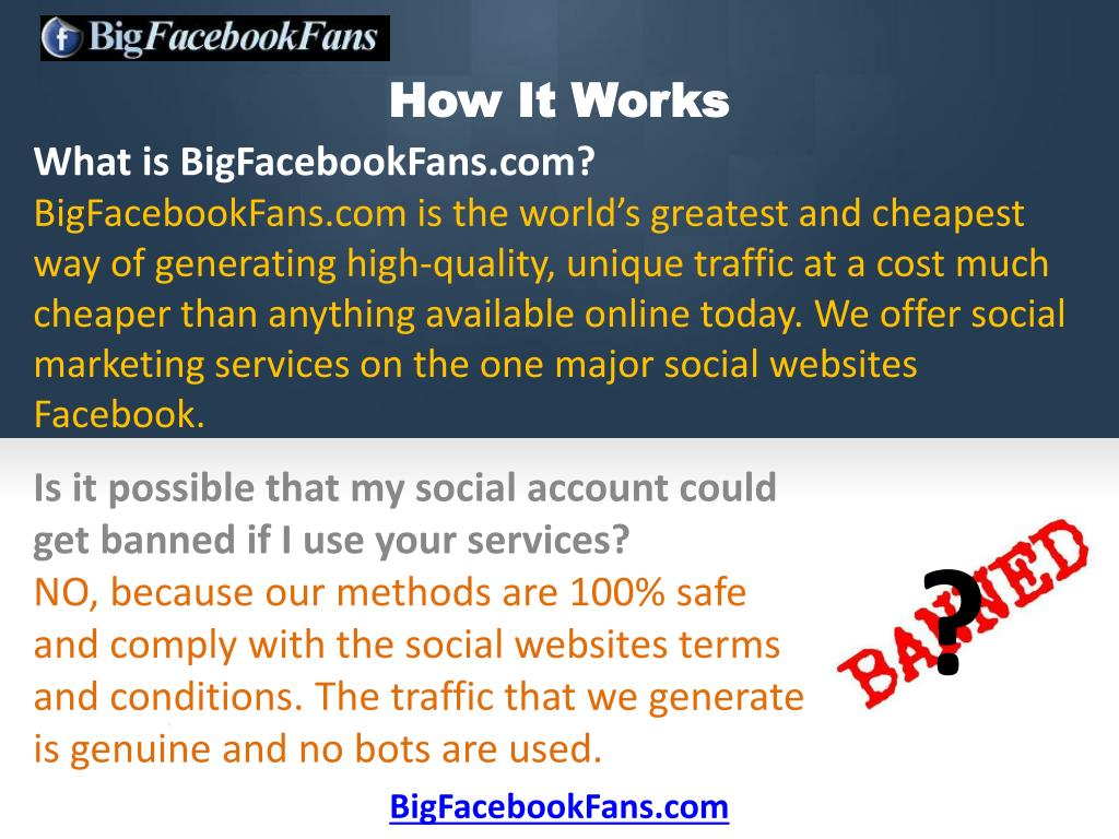 What is BigFacebookFans.com?