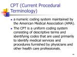 cpt current procedural terminology