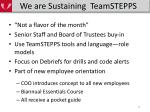 we are sustaining teamstepps
